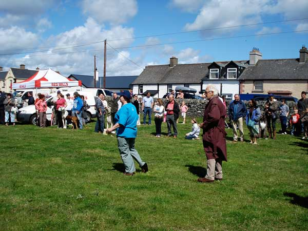 Annagassan Viking Festival August 2008