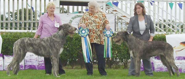 3 Best Bitch and Reserve BB_IWS of Ireland Open show July 25_2010_light3