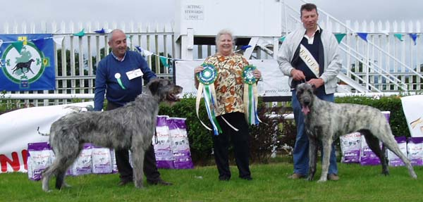 4 Best Dog and Reserve BD_IWS of Ireland Open show July 25_2010